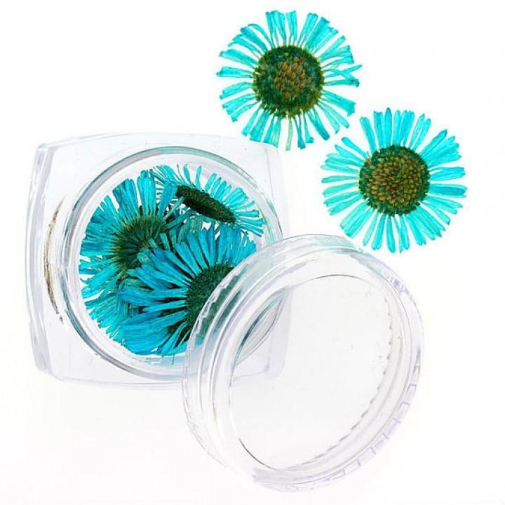 Сухоцветы для дизайна №104