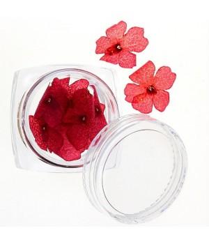 Сухоцветы №30