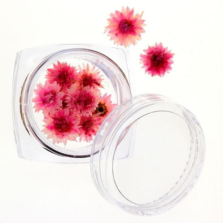 Сухоцветы для дизайна №31